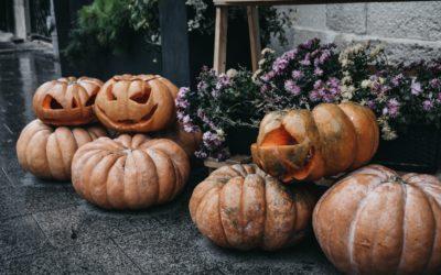 Kürbiszeit: Rezepte & Tipps für unsere orangeroten Herbstfreunde