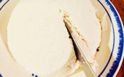 Käse aus Milch ganz einfach selbermachen